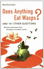 does_anything_eat_wasps
